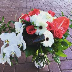 awesome vancouver florist Valentine's Day is coming people!!!!! It will be here before you know it!!!! $150 & up for this beautiful white and red assortment in Vases ❤️ Get your love something rooooommmannntic this Vday❤️ #5daystogo #valentinesday #beautiful #flowers #burnabyflorist #hastingsstreet #thehieghts #beautifulbtitishcolumbia #anthurium #gerbera #hydrangea #roses #phaleanopsisorchid #cordeline #tropical by @plushfloralstudio  #vancouverflorist #vancouverflorist...
