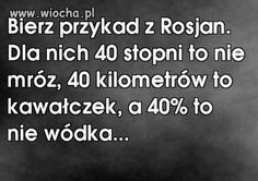 Wiocha.pl - Absurdy polskiego internetu: śmieszne obrazki z facebook,nasza-klasa,fotka.pl i innych Wtf Funny, Haha, Jokes, My Love, Living Room, Husky Jokes, Ha Ha, Memes, Funny Pranks