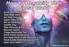 Detoxification of the Third Eye (Pineal Gland) Decalcify Pineal Gland, Pineal Gland Facts, Pineal Gland Detox, Chakras, Mind Body Soul, Chakra Healing, Spiritual Awakening, Spiritual Enlightenment, Natural Healing