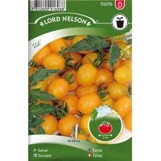 Tomat, Körsb.-, Ildi Fröhäxan.se