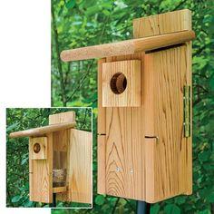 Ultimate Bluebird Nestbox