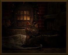 let your heart be light . Wie Macht Man, Photo Manipulation, Your Heart, My Photos, Let It Be, Animals, Pictures, Cosy Christmas, Animales