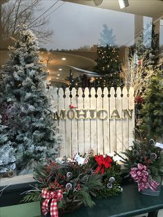Holiday Windows if Cooperstown 2016!