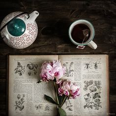 Everything tea, books, coffee, and journals. We do not own the rights to any material presented here, unless stated otherwise. Coffee Time, Tea Time, Coffee Break, Coffee And Books, Coffee Reading, My Tea, Simple Pleasures, Book Photography, Afternoon Tea