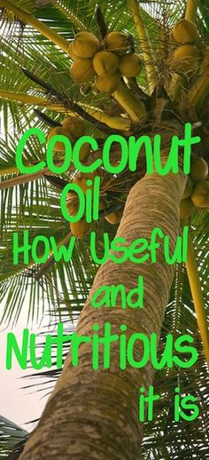Find out about this incredible fruit and its amazing health benefits. Click here : http://www.squidoo.com/cool-coconut-oil