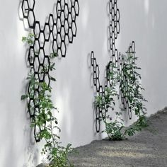 Elegant Decorative Trellis System Comb-Ination by Flora - vertical garden Metal Trellis, Garden Trellis, Wall Trellis, Plant Trellis, Vine Trellis, Contemporary Fencing, Contemporary Gardens, Garden Modern, Modern Fence