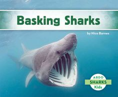 Buy Basking Sharks by Nico Barnes and Read this Book on Kobo's Free Apps. Discover Kobo's Vast Collection of Ebooks and Audiobooks Today - Over 4 Million Titles! Shark Activities, Basking Shark, Sharks For Kids, Online Books For Kids, New Children's Books, Shark Week, Cute Baby Animals, Paperback Books, Audio Books