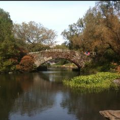 Central Park - we stood right on that bridge.