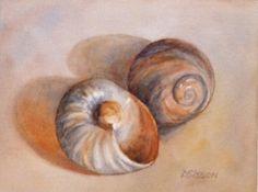 Sea Shells Oil Painting Still Life Art Ocean Mollusk, painting by artist Debra Sisson