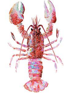 Original Watercolor Paintings & Giclée Prints by VioletteTideStudios Lobster Drawing, Lobster Art, Red Lobster, Art And Illustration, Watercolor Print, Watercolor Paintings, Watercolor Paper, Sea Turtle Art, Art Carte