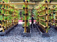 The Babylon Urban Garden Made Out of Bamboo • 1001 Gardens