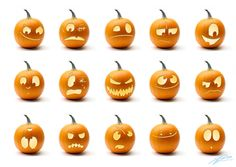 Scary Pumpkin Faces | the Amateur Zoologist: Halloween Fun