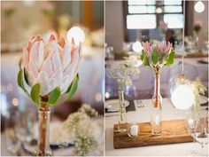 Like the wooden planks in the centre of the table. Reception Table Decorations, Decoration Table, Wedding Decorations, Protea Wedding, Wedding Flowers, Trendy Wedding, Our Wedding, Safari Wedding, South African Weddings