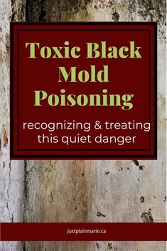 ff812d5f1b664 Toxic black mold poisoning - what you need to know