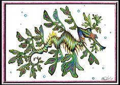 Leafy Sea Dragon Greeting Card by deubellzebub on Etsy, $3.50 Leafy Sea Dragon, Dna Project, Nautical Christmas, Goddess Art, Flamboyant, W 6, Custom Cards, Sea Creatures, Under The Sea