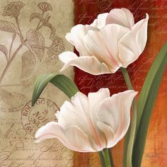 Abby White Solid-Faced Canvas Print Wall Art Print entitled French Tulip Collage I Canvas Wall Art, Wall Art Prints, Fine Art Prints, Decoupage Printables, Botanical Art, Watercolor Flowers, Flower Art, Framed Artwork, Art Decor