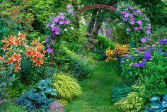 Vashon-Maury Island, WA: Summer perennial garden featuring lilies, clematis…