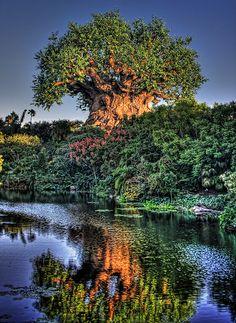 Tiggerific Tuesday Trivia: The Tree of Life
