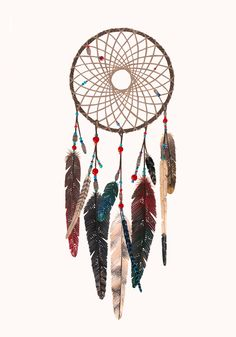 What Do Dream Catchers Do Dream Catcher Peacock Feathers  Artwatercolor  Pinterest