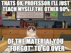 Funny grumpy cat quotes, grumpy cat funny, funny grumpy cat, grouchy cat, grouchy quotes …For more hilarious humor and funny pics visit www. Gato Grumpy, Grumpy Cat Book, Grumpy Cat Quotes, Grumpy Cat Humor, Cat Memes, Grumpy Kitty, Cats Humor, Memes Humor, Nursing School Humor