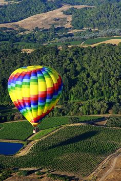 Hot Air balloon  Napa Valley - terrified the night before and had crash landing with champagne owners chasing us off their property, but hey- I have a great story and memory now!  So glad we did it.  Nothing like you imagine.  Feels like you are perfectly still while floating.