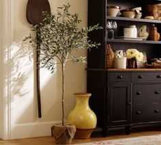 "Faux Potted Olive Tree | Pottery Barn - I normally don't support ""faux"" greenery, but when you have an indoor black thumb like I do it's better than nothing!"