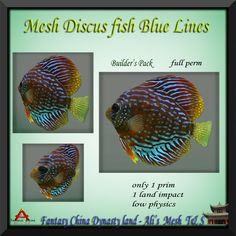 Such a gorgeous addition to any aquarium or school of fish. This mesh Discus has an amazing amount of detail. The small neon stripes make this a fish that stands out in a school of fish yet is beautiful enough to swim alone in a fishbowl. And at the low land impact of just 1! Please read and adhere to the terms of use which apply to all full permission Fantasy China products.