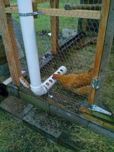 I made this chicken feeder. It is made out of 1 piece of 3 inch pipe 2 end caps and one 90° elbow. I cut a 1.5 foot piece off one end and dr...