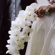Orchids are just fabulous wedding flowers...