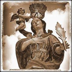 Storia, cultura, politica, ambiente, tradizioni, attualità e notizie della cittadina tirrenica in provincia di Cosenza.... online da marzo 2007