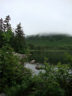 moose country | white mountains nh