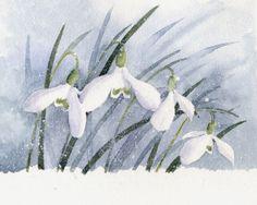 Rachel Mcnaughton - Snowdrops small.jpg