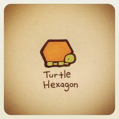 Turtle Hexagon - @turtlewayne- #webstagram