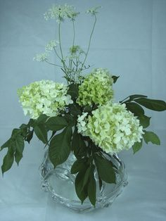Voodoo lily leaves, hydrangea, Queen's Anne Lace