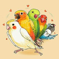 Cute Animal Drawings, Bird Drawings, Kawaii Drawings, Cute Drawings, Drawing Sketches, Funny Birds, Cute Birds, Pretty Birds, Beautiful Birds