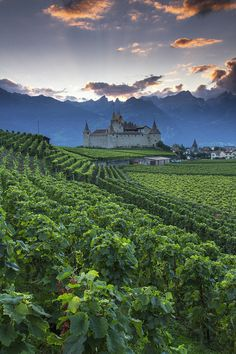Chateau D'Aigle | Switzerland (by Patrick Bellon)
