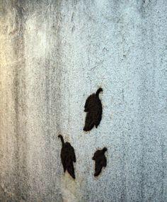 """""""Go Green"""". Carolina Sanfer. 2010. Intervención+Fotografías. Esta intervención es realizada con #musgo sobre #muro. Para su mantenimiento  requiere de cuidados constantes para mantener la humedad, con lo que nos recuerda la fragilidad de la #naturaleza."""
