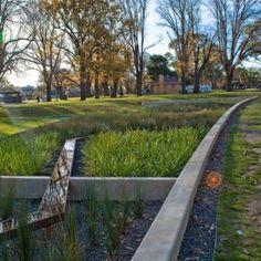 children Architecture Articles - The Edinburgh Gardens Rain Garden in Melbourne Water Plants, Cool Plants, Water Garden, Fruit Garden, Urban Landscape, Landscape Design, Rain Garden Design, Edinburgh, Melbourne