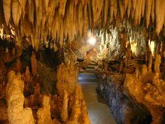 Η σπηλιά του Δράκου είναι από τα πιο σύγχρονα σπήλαια των Βαλκανίων, αφού είναι…