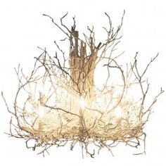 WWW.DEANNAWISH.COM  White Hickory Branch Chandelier