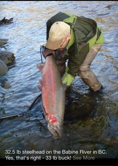 Fly fishing for giant steelies!