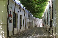 Calle Ciegos, Jerez de la Frontera, Cádiz, Spain  #CalleCiegos #Jerez #Cádiz #Spain #Maladeviagem