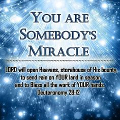 You are Somebody's Miracle Miracles Of Jesus, Believe In Miracles, Encouragement For Today, Good Night Prayer, God Is Amazing, Attitude Of Gratitude, Uplifting Quotes, Spiritual Inspiration, Christian Quotes