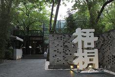 梧桐-门面-环境-门面图片-北京美食-大众点评网