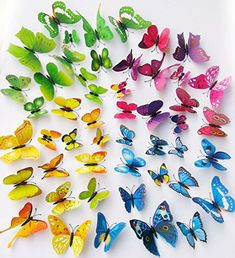 O4U® 48pcs 4 Colours 3D Butterfly with Magnet and Sponge Sticky Wall Stickers Murals Removable DIY Butterflies for Bedroom Living Room Office Classroom Decorations O4U http://smile.amazon.com/dp/B016GVXSC8/ref=cm_sw_r_pi_dp_hOwTwb030H3TE