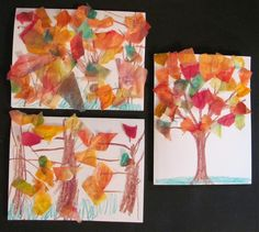 some variations of the trees made with tissue paper