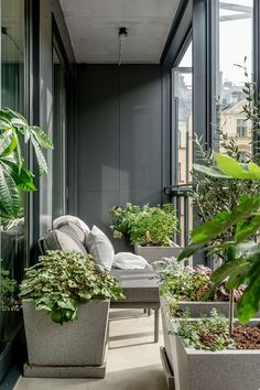 Explore decor and styling ideas for small apartment balconies. Create a hanging out spot or a terrace garden. Modern Balcony, Small Balcony Garden, Small Balcony Decor, Small Terrace, Balcony Plants, Rooftop Garden, Balcony Design, Patio Design, Balcony Ideas