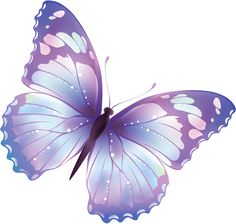 Download PNG image: flying butterfly PNG image