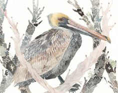 Brown Pelican and Branches No. 2 -Archival Print