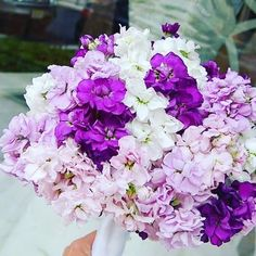 It's all about the purples in this nouquet. #flowers #wedding #bridal #princeton…